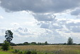 Fens and clouds