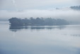 Mist rising over Lough Mahon - again